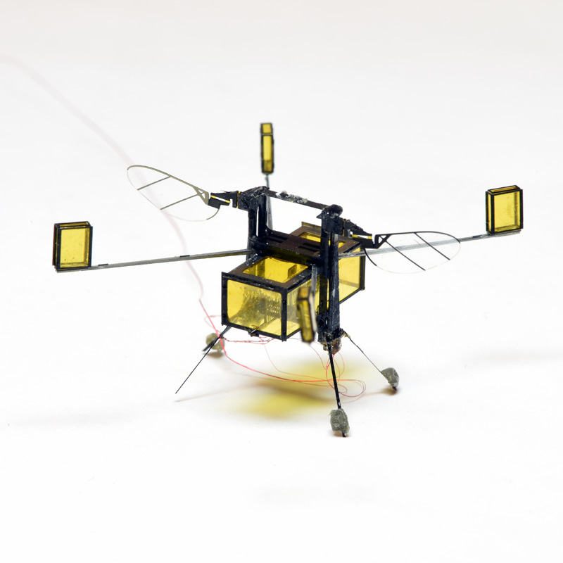 the RoboBee, one of the smallest yet most versatile drones