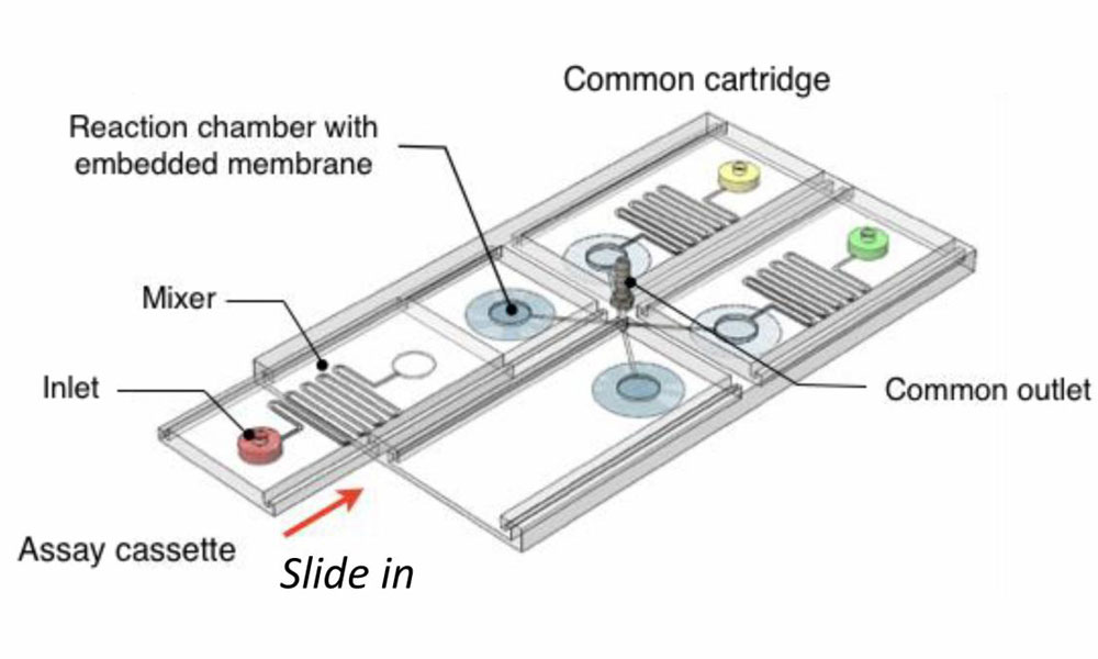 colour-changing sensors for disease diagnosis