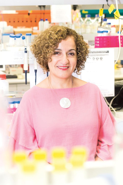 Professor Hala Zreiqat