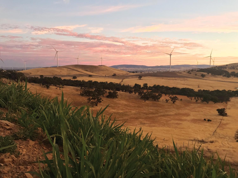 Victoria's Ararat Wind Farm