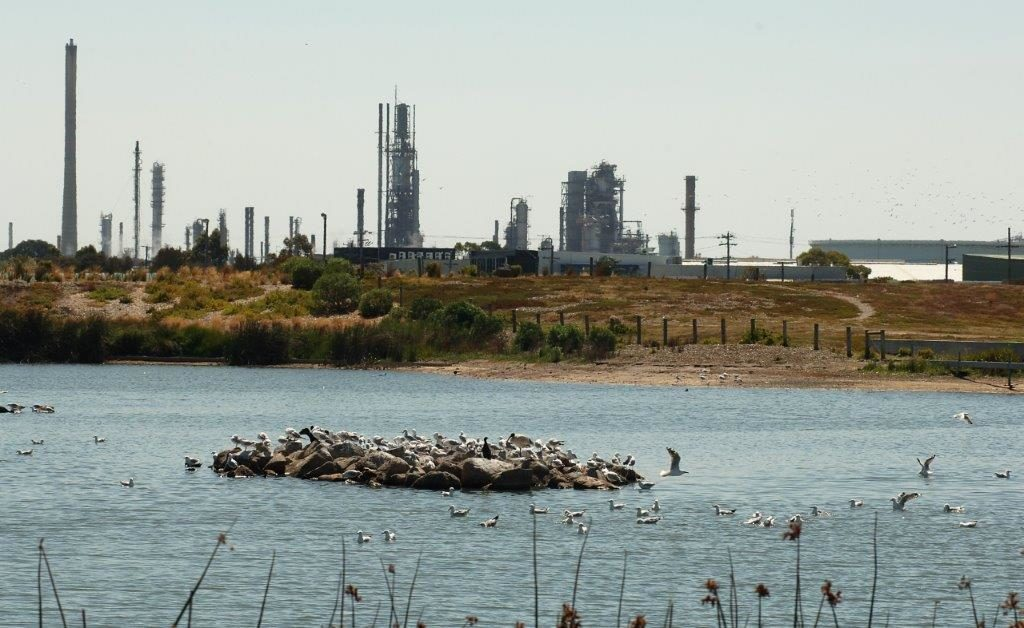 The Altona Refinery