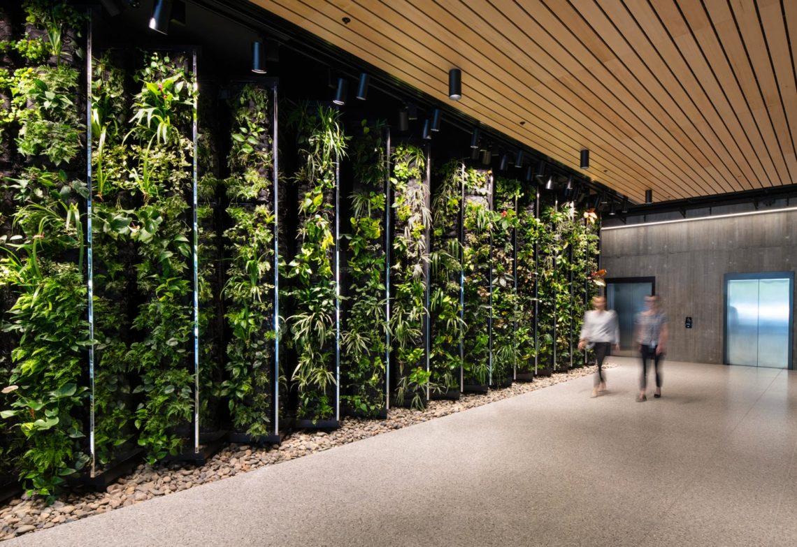 Wood wins: Constructing Australia's largest engineered ...