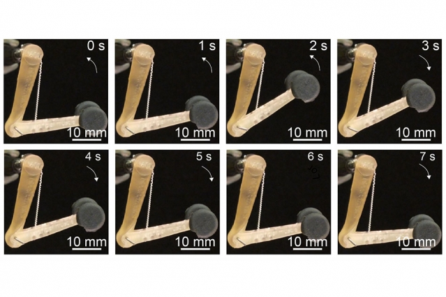 artificial muscles to control robot arms